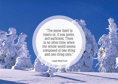 quotes on snow snow winter quotes quotesgram