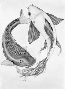25+ best ideas about Fish drawings on Pinterest | Fish art ...