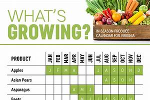Seasonal Fruits And Vegetables Chart New York What 39 S In Season Virginia Produce Calendar Infographic