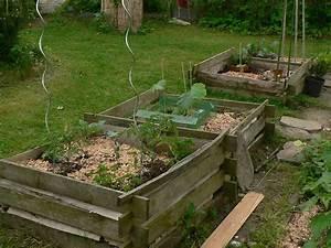 Kürbis Gute Nachbarn : pflanzen die sich m gen webdesign nordharz ~ Whattoseeinmadrid.com Haus und Dekorationen