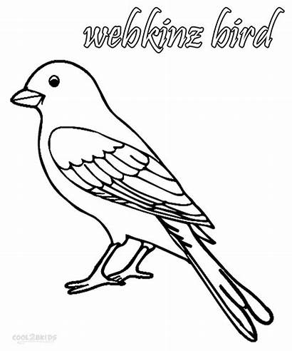 Coloring Pages Cockatiel Webkinz Bird Parrot Printable