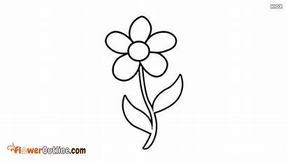 Single Outline Flower Quotes