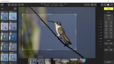 Free Form Crop Image Online by Polarr Photo Editor A Pro Styled Editor From The Windows