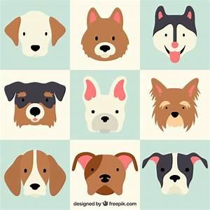 Lovely dog breeds Vector   Free Download