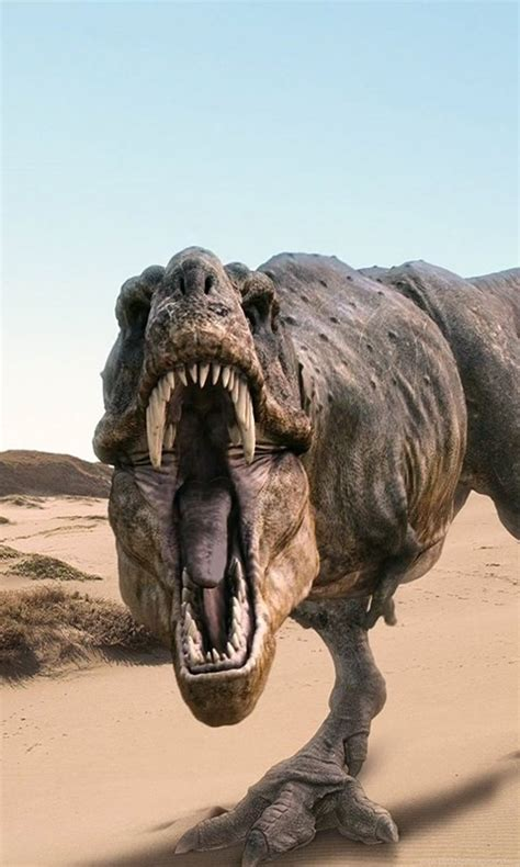 dinosaurs  rex wallpapers hd desktop desktop background