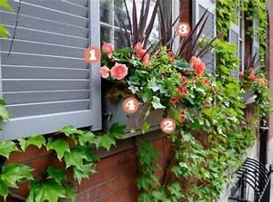 Künstliche Blumen Für Balkonkästen : balkonkasten bepflanzen gr ser blumen und bodendecker ~ A.2002-acura-tl-radio.info Haus und Dekorationen