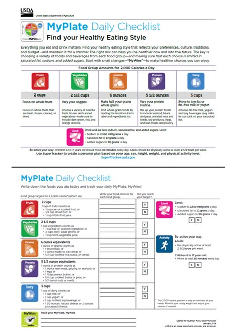 my daily food plan worksheet worksheets for all