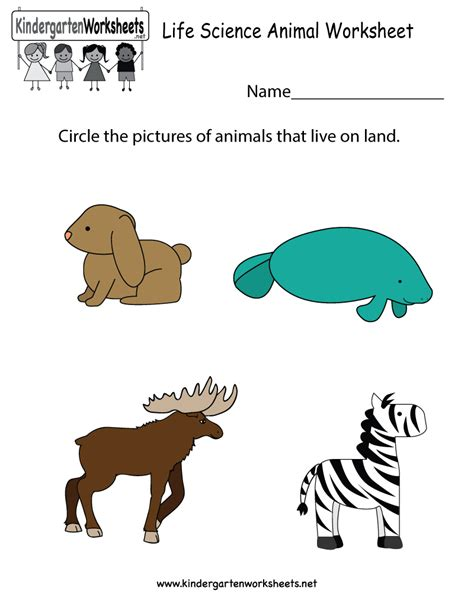science animal worksheet free kindergarten learning