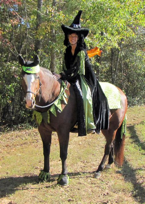 check   great horse costume ideas