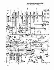 Complete Wiring Diagrams Catalogues