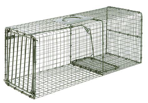 heavy duty cage traps wildlife animal capture possum