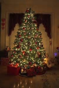beautiful picture christmas trees pinterest