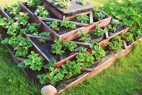 Garten Pflegeleicht Gestalten » Praktische Ideen, Tipps