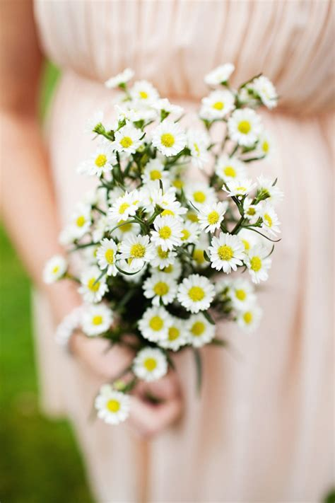 darling daisies   wedding arabia weddings
