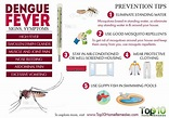 Dengue Fever: Signs, Symptoms and Prevention Tips | Top 10 ...