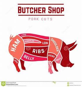Cuts Of Pork Stock Vector