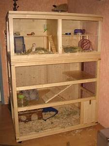 1000+ images about -GOOD HAMSTER CAGES- on Pinterest ...