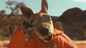 The entire Kangaroo Jack movie but it is just kangaroos ...