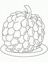 Apple Coloring Sugar Pages Fruit Custard Popular sketch template