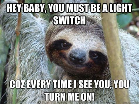 Sexual Innuendo Meme Sexual Innuendo Meme Sloth Www Imgkid The Image