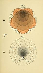 Geometrical Psychology Or The Science Of Representation An Abstract Of The Theories And Diagrams Of B W Betts 1887