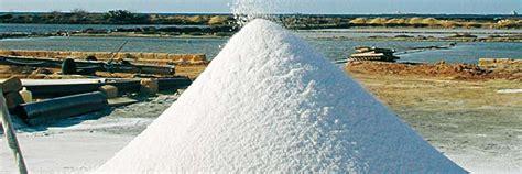 proprietà lada di sale la propriet 224 benefiche non conoscevi sale marino