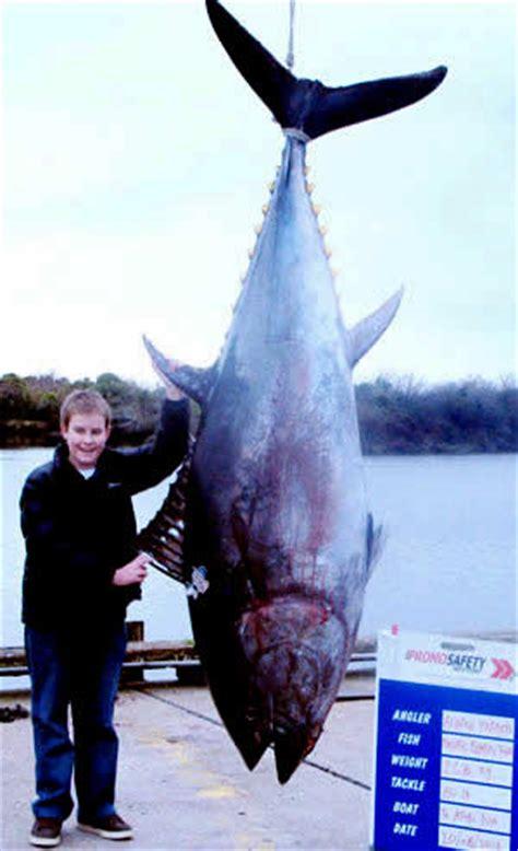 Flöhe Was Tun by Underwatertimes 14 Year Kiwi Lands World Record