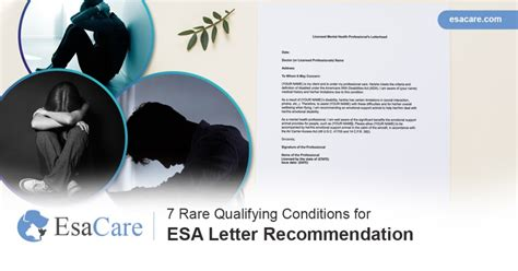 Esa doctors utilizes technology to help connect clients with licensed mental health professionals who can esa doctors helps you connect easily and privately with a licensed mental health professional. 7 Rare Qualifying Conditions for ESA Letter Recommendation ...
