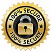 Image result for security safe website logos