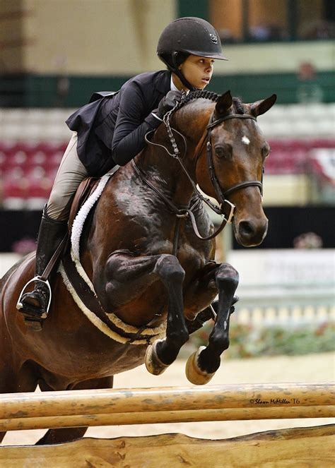 pony hunter champion horse challenge capital shawn mcmillen gochman repeats sophie performance grand erica timeless felder