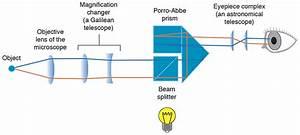 Slit Lamp Diagram