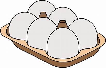 Protein Clipart Egg Transparent Nutrition Carton Grain