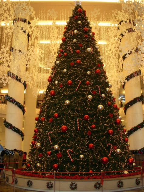 mall christmas tree pictures photos and images for