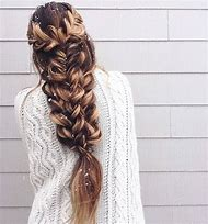 Braid Hairstyles for Long Hair