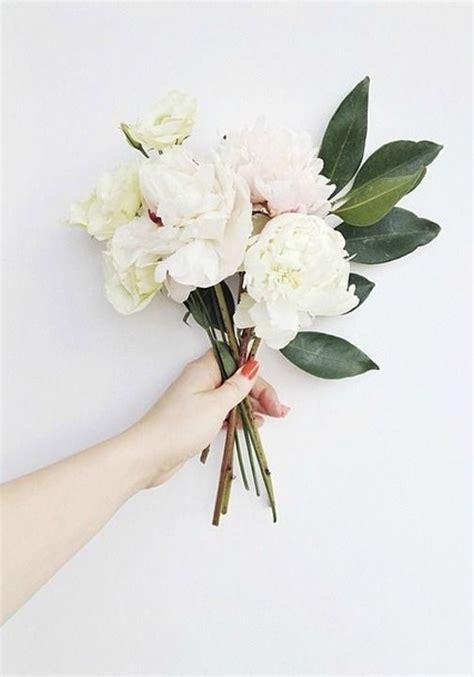 elegantly minimalist instagram accounts  follow