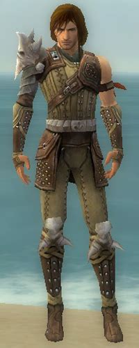 ranger studded leather armormale guildwars wikia
