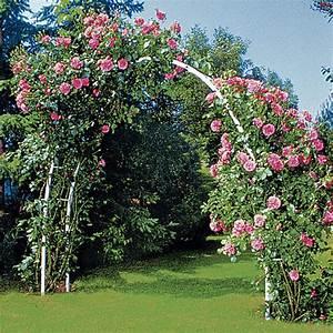 Rosen Für Rosenbogen : rosenbogen wei rosenb gen obelisken beckmann kg ihr spezialist f r gew chshaus und ~ Orissabook.com Haus und Dekorationen
