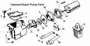 Motor Parts  Hayward Pool Pump Motor Parts