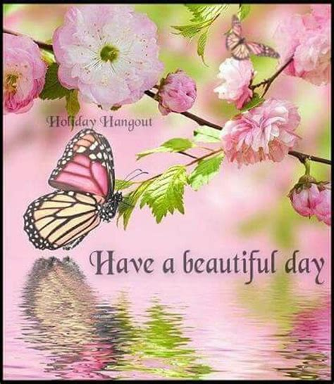 beautiful day image quote pictures