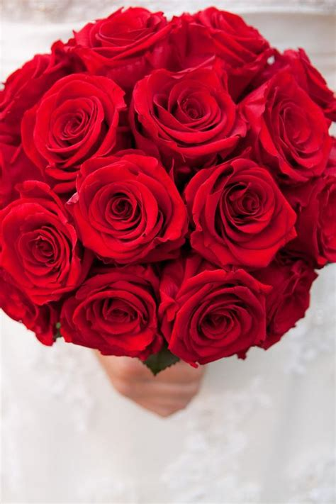 classic red rose bridal bouquet   real preserved roses