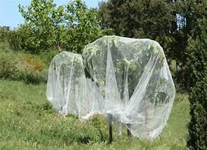 Filet Pour Arbre Fruitier : un jardin habit fruitiers ~ Melissatoandfro.com Idées de Décoration