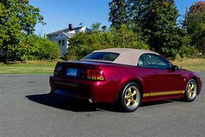 Used 2004 Ford Mustang 40th Anniversary GT Convertible - Crimson Red for sale