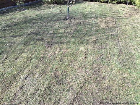 Rasen Nach Vertikutieren by Vertikutieren Oder Wie Aus Einem Rasen Einen