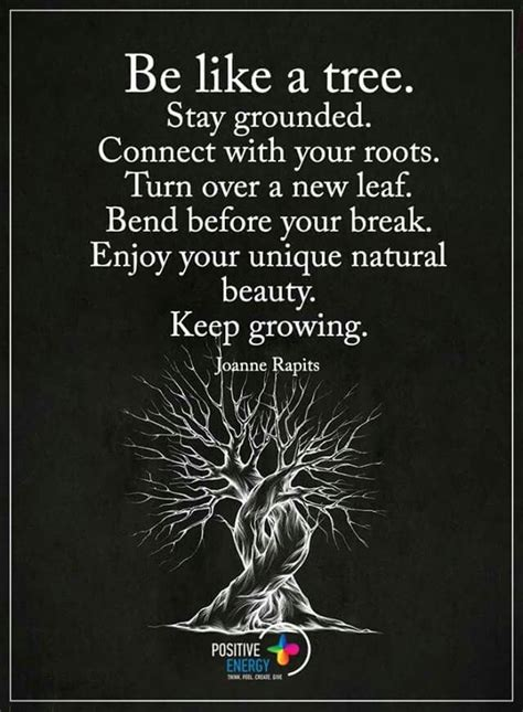 Be Like A Tree Stay Grounded Connect With Your Roots