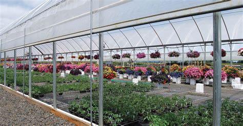 green house plans designs efficient greenhouse design nurseryman