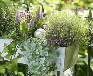 Blumenkästen Bepflanzen Sonnig : blumenk sten ausw hlen und richtig bepflanzen living at home ~ Frokenaadalensverden.com Haus und Dekorationen