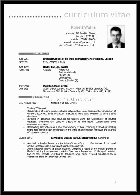 exle of cv profile summary information technology