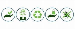 Una guida per principianti su come coltivare Cannabis in fibra di cocco RQS Blog