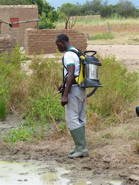 vom exportschlager zum ladenhüter ein stechmückenbekämpfung wird zum exportschlager