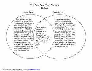 Black Bear Polar Bear Venn Diagram